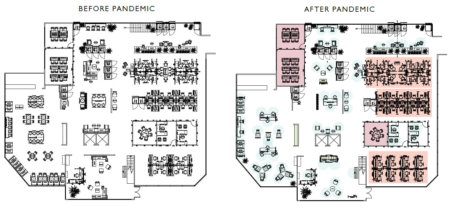 Before and After Pandemic Graphics-final-v2.jpg