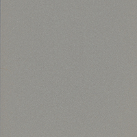 Metal-Finishes-Starlight-Silver-Metallic_200x200px.jpg